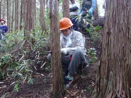 女性社員も間伐作業 山林活動