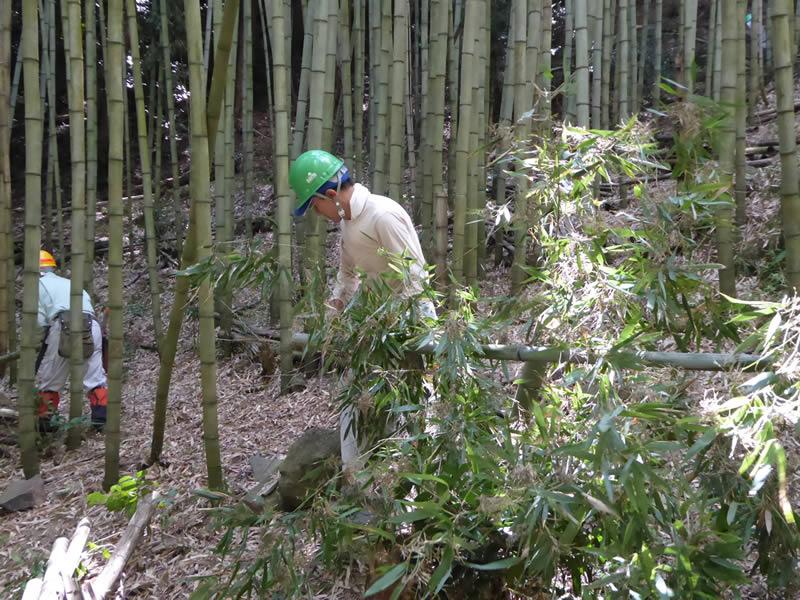 森林活動 受注生産